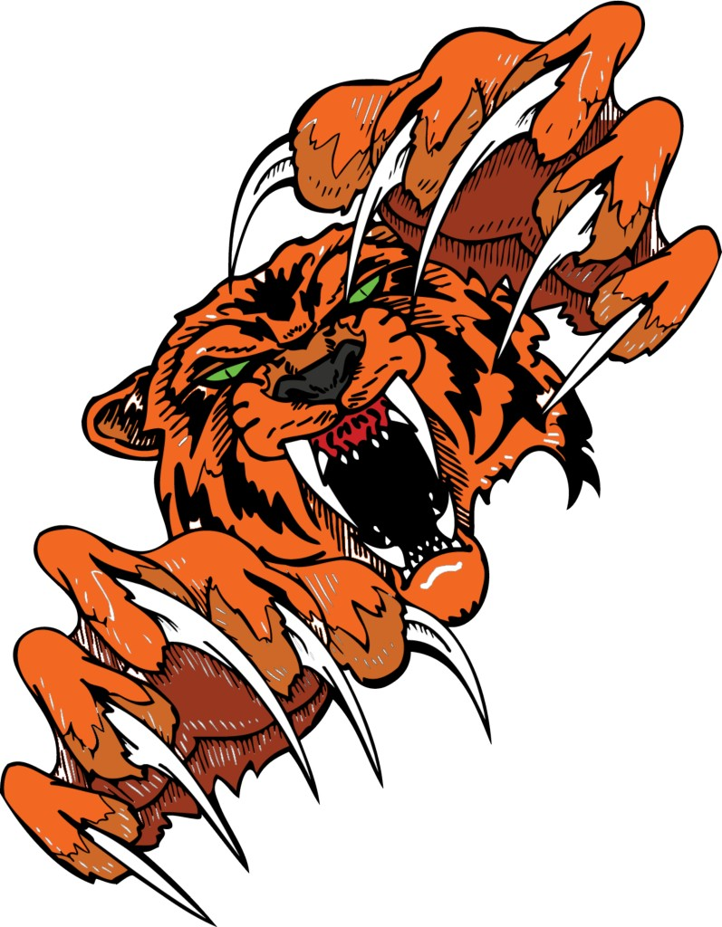 my tigers1