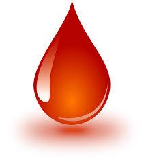 kvapka-krvi